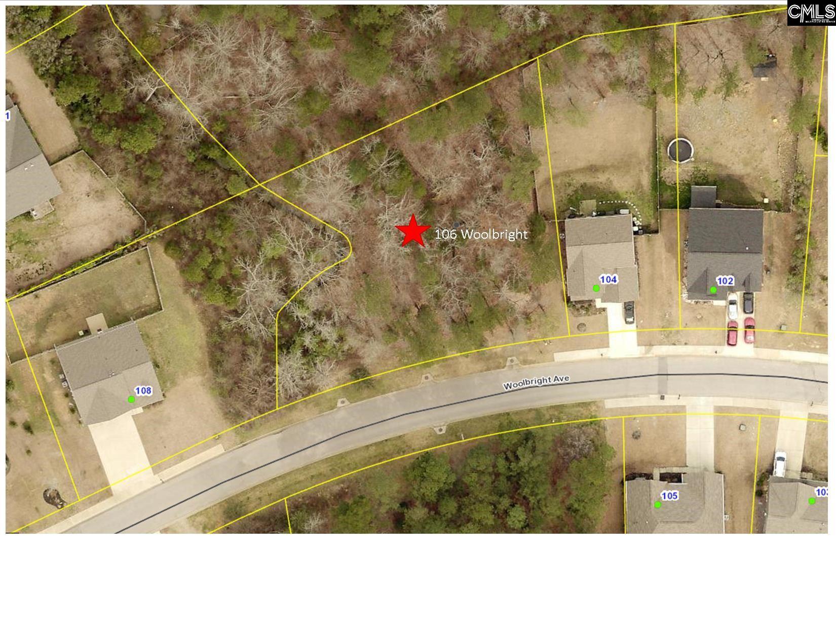 106 Woolbright Avenue Chapin, SC 29036