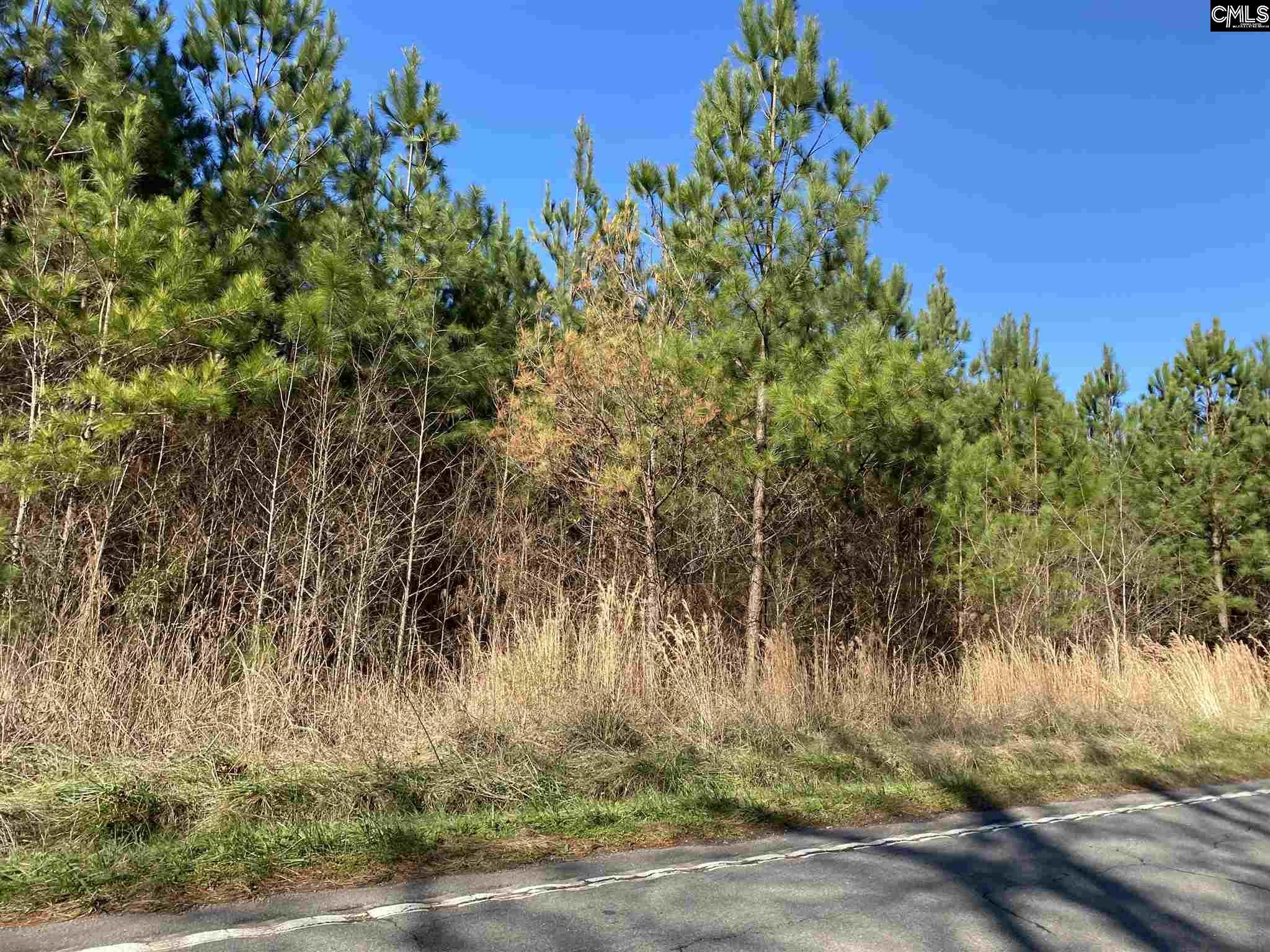 Priceville Road Gilbert, SC 29054
