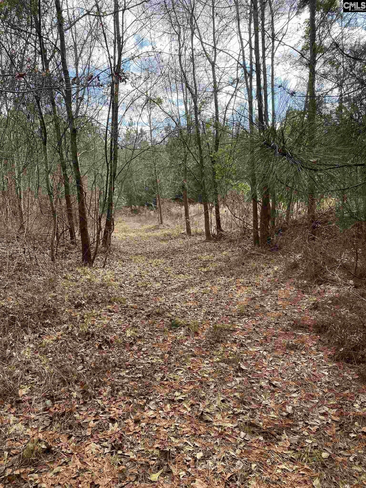308 Pond Branch Road Lexington, SC 29073