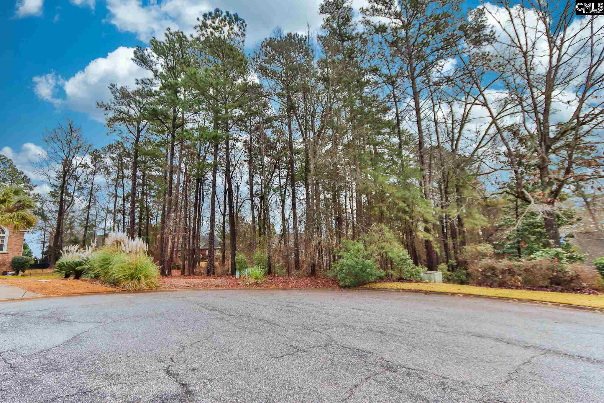 107 Lake Forest Trail Chapin, SC 29036