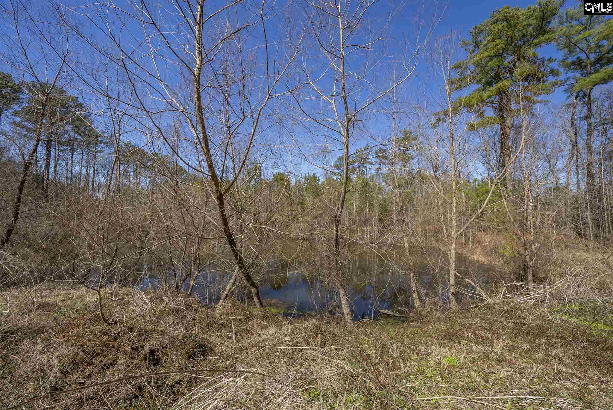 1040 Hollis Pond Road Blythewood, SC 29016