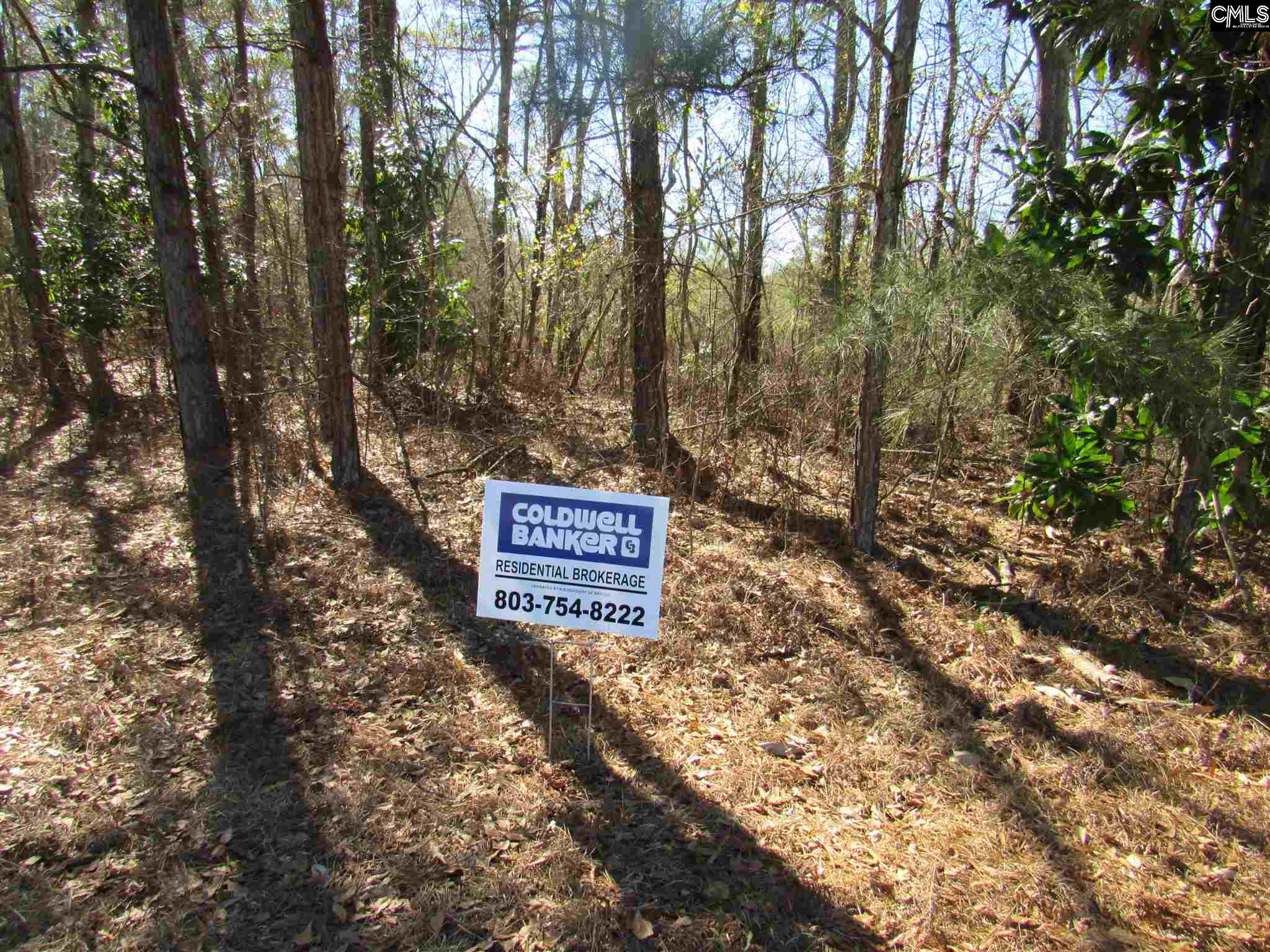 TBD Illery Road Sumter, SC 29153