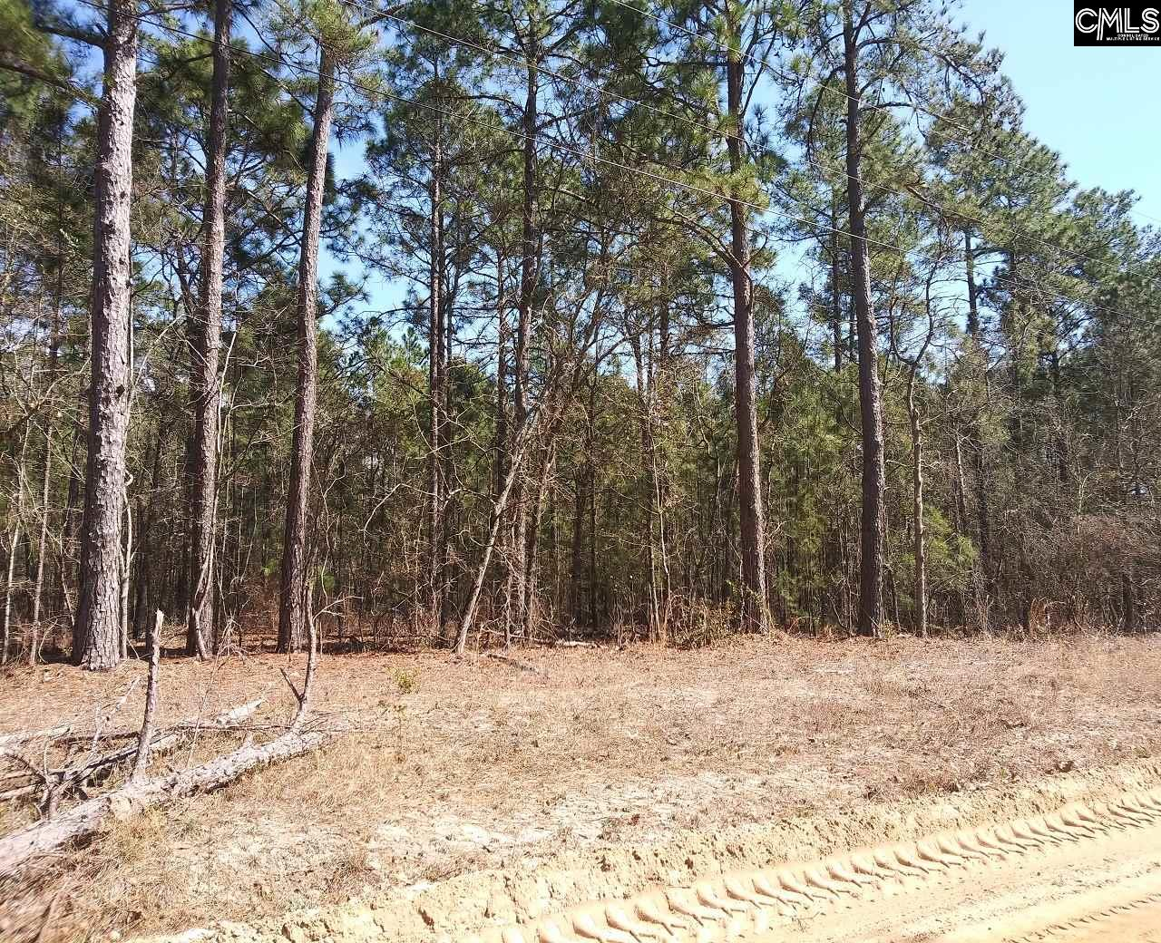 Lot 26 Anne Drive UNIT Lot 26 Pelion, SC 29123