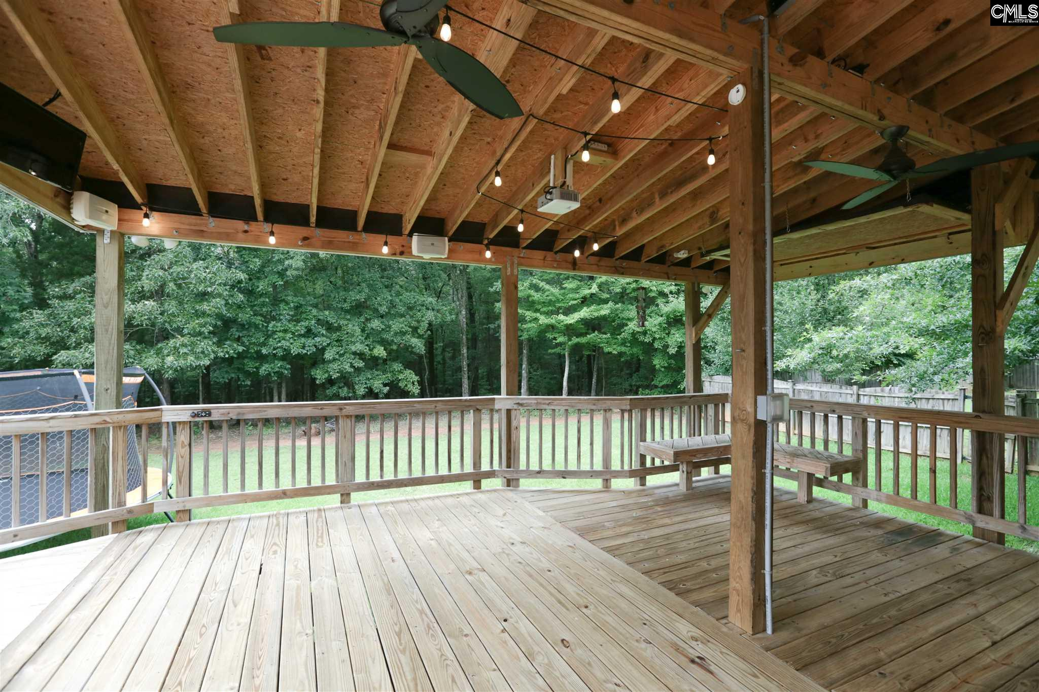 113 Tail Feather Way Chapin, SC 29036