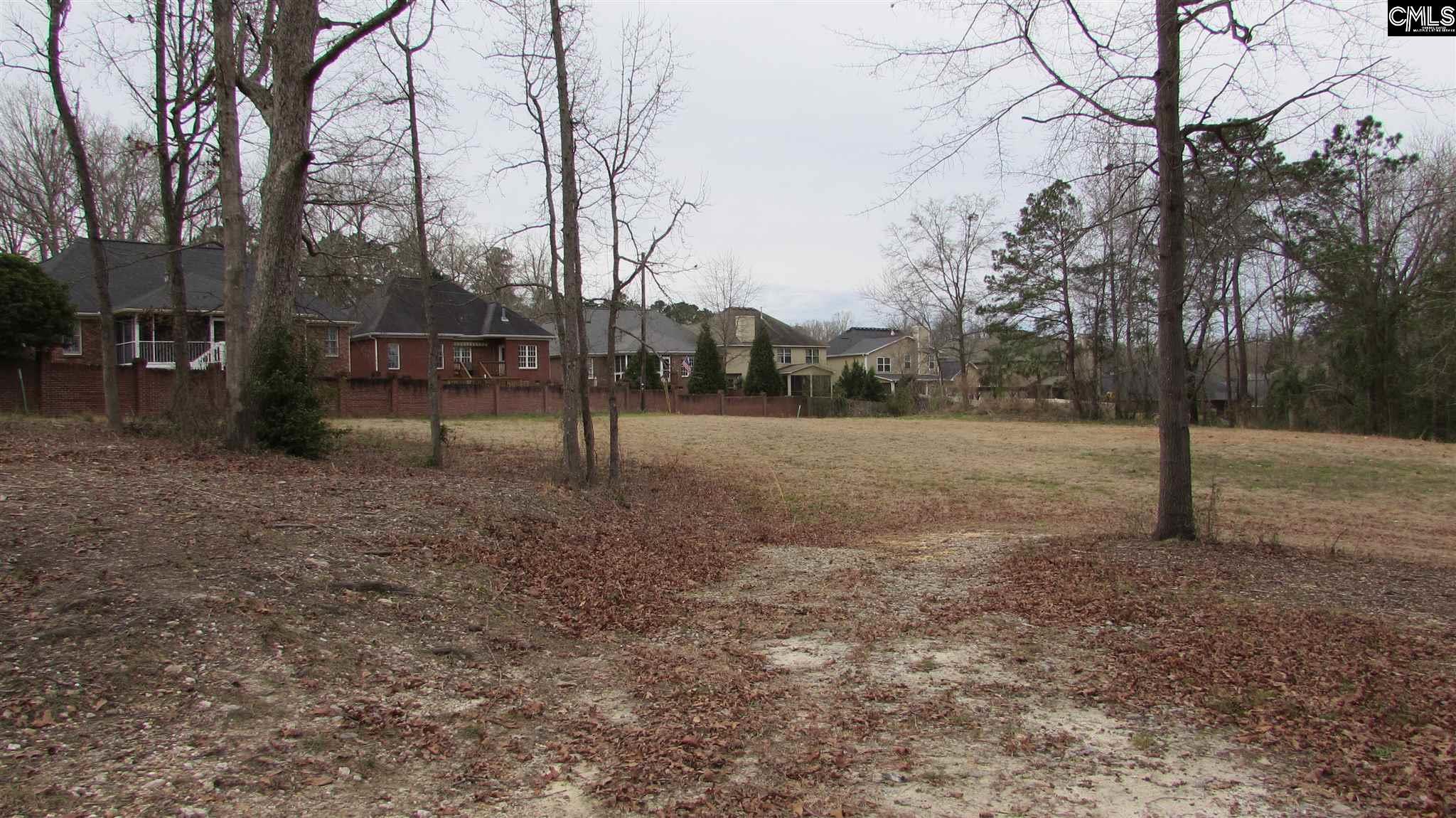 239 Old Chapin Road Lexington, SC 29072
