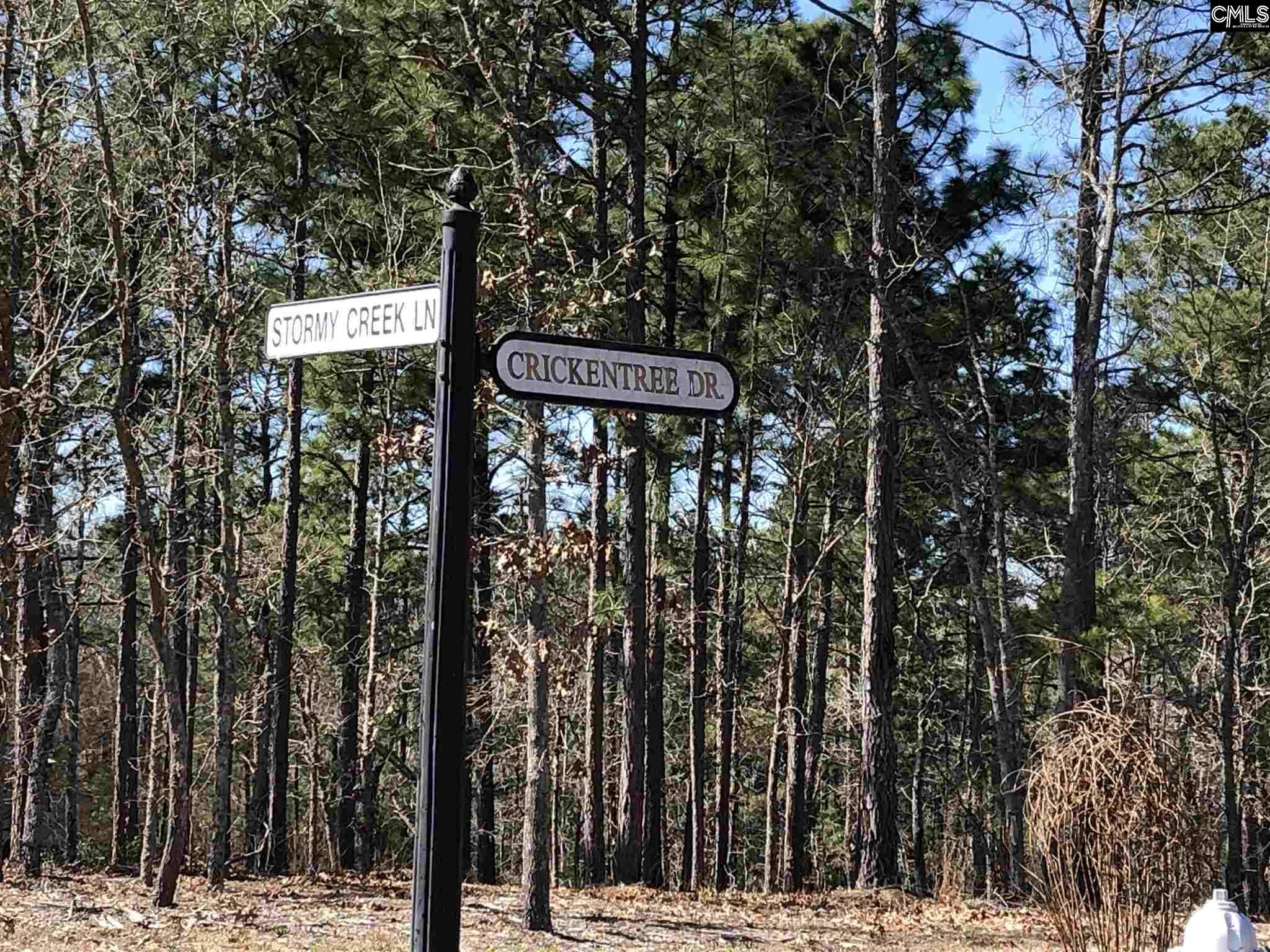 208 Crickentree Drive Blythewood, SC 29016