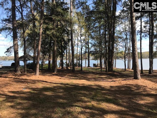 150 Morning Lake Drive Lexington, SC 29072