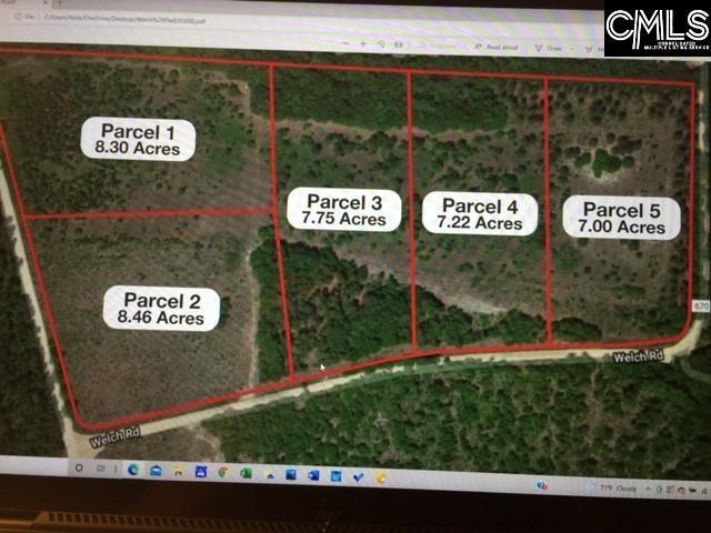 Parcel 1 Gunter Pond/welch Road Wagener, SC 29164