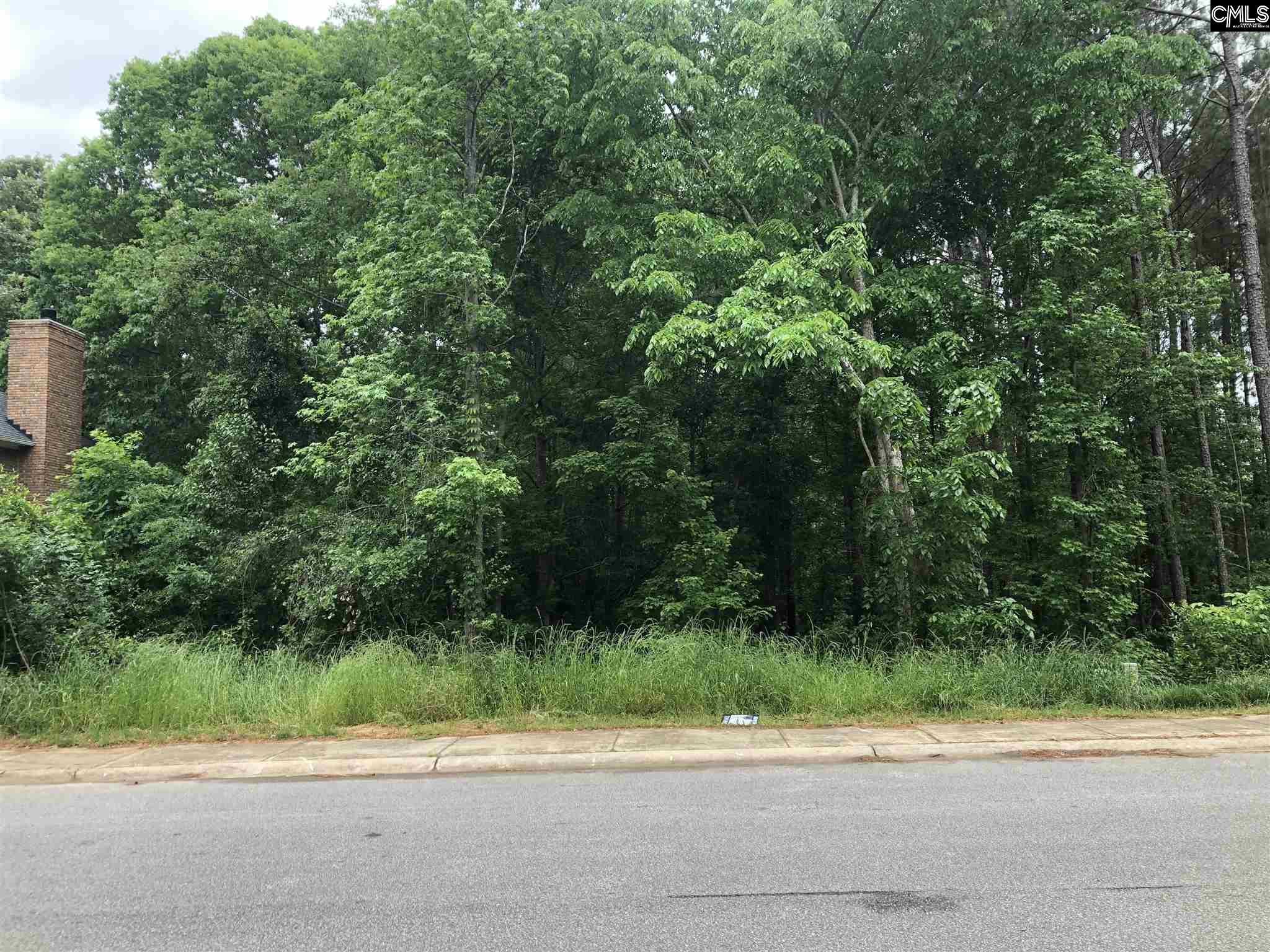 509 Mallard Lakes Drive UNIT #42 Lexington, SC 29072