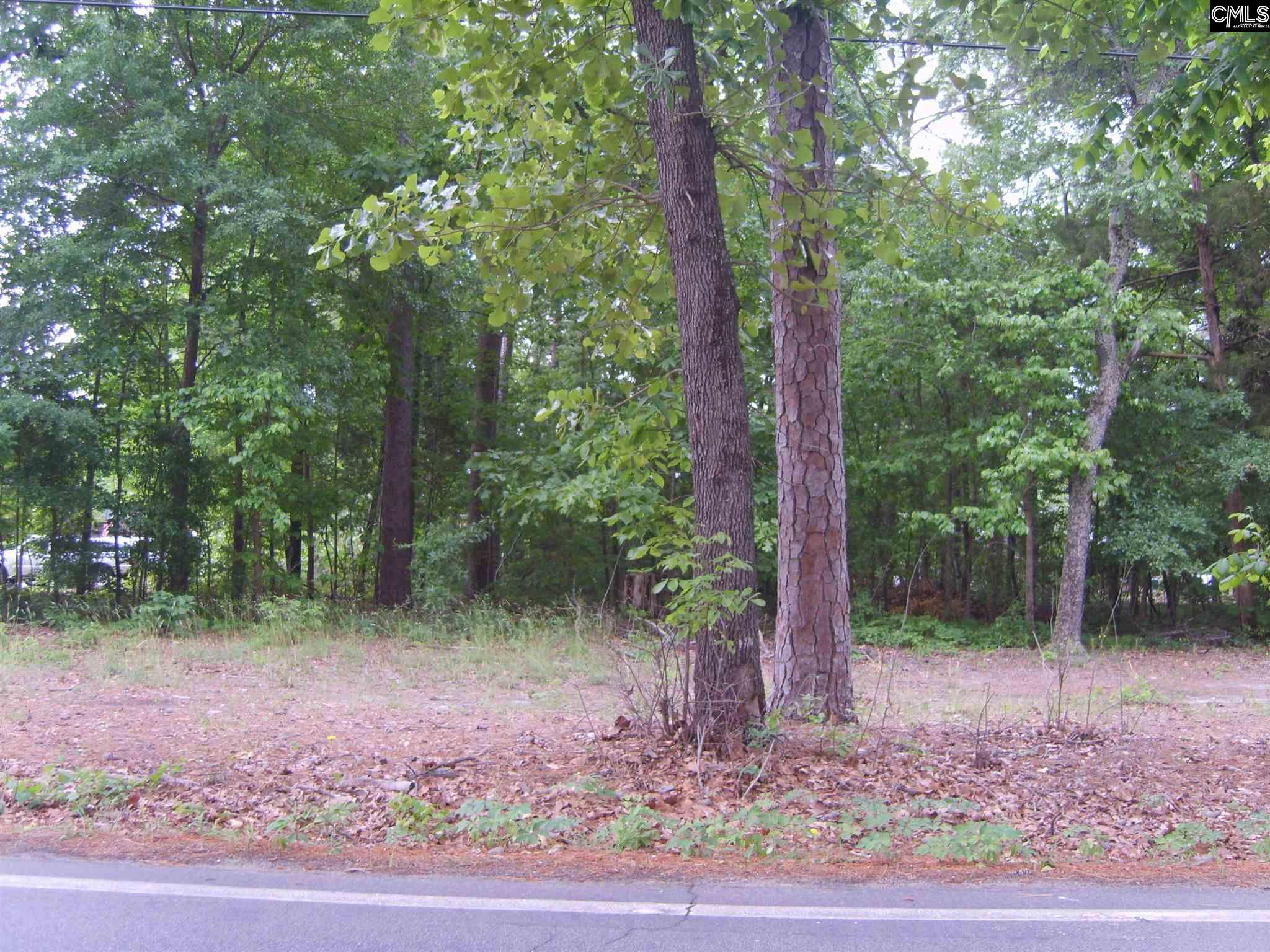 Methodist Park Road West Columbia, SC 29169-0000