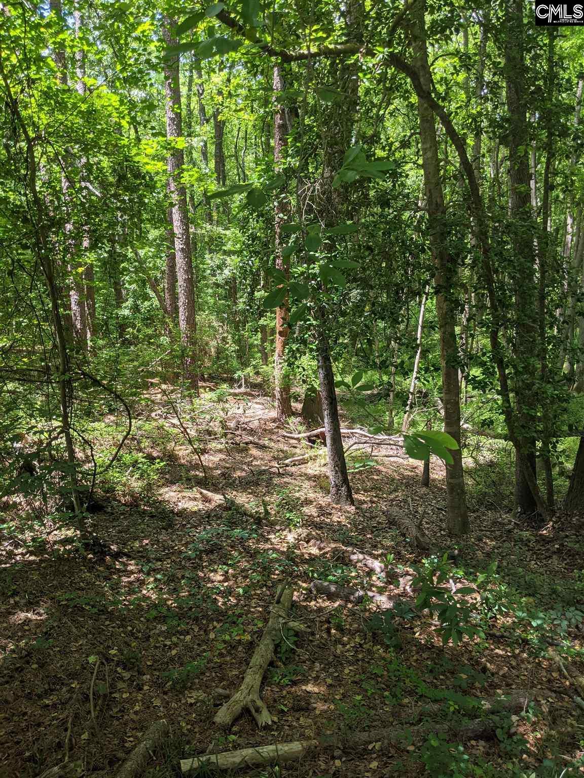 Creek Bottom Drive Cayce, SC 29033