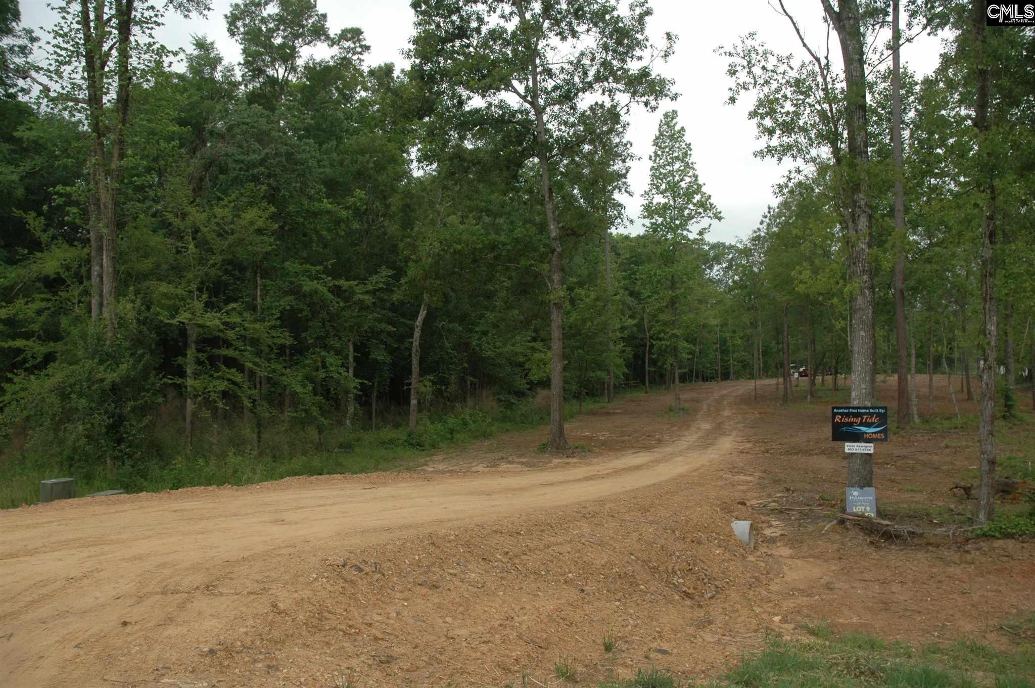 Lot 9 Long View UNIT #9 Leesville, SC 29070