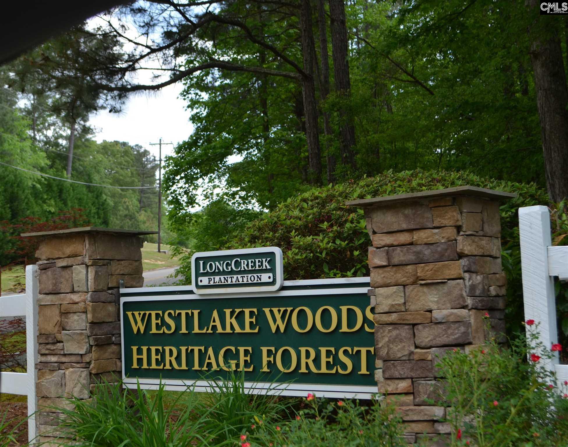 105 Westlake Ridge Drive UNIT Lot# 38 Blythewood, SC 29016