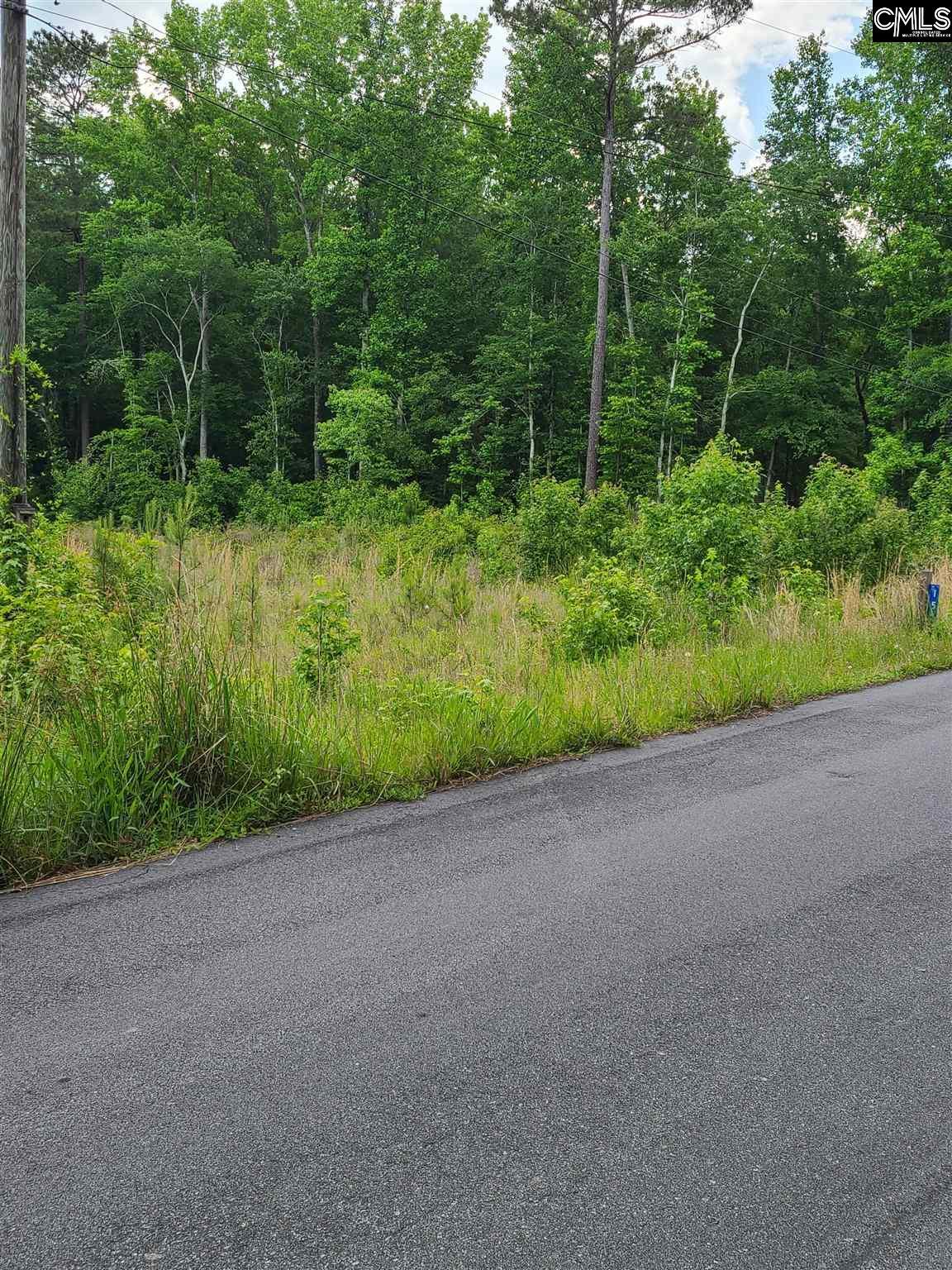 152 Williams Wood Drive Prosperity, SC 29127-9999