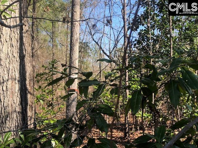 771 Target Road Holly Hill, SC 29059
