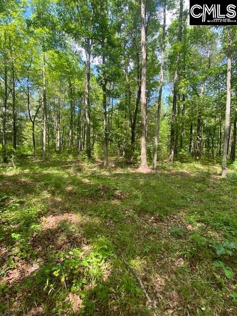 230 Back Acres Road Chapin, SC 29036