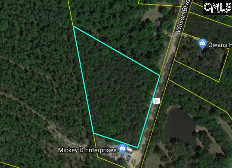 +/- 7.08 acres located in the heart of Blythewood. 540' of road frontage on Wilson Blvd.