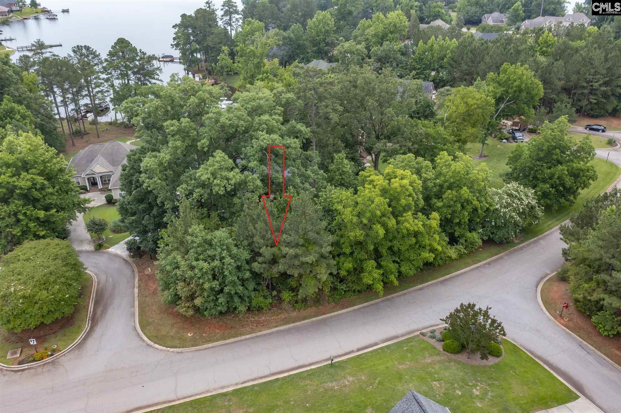 325 Lake Estate Drive Chapin, SC 29036
