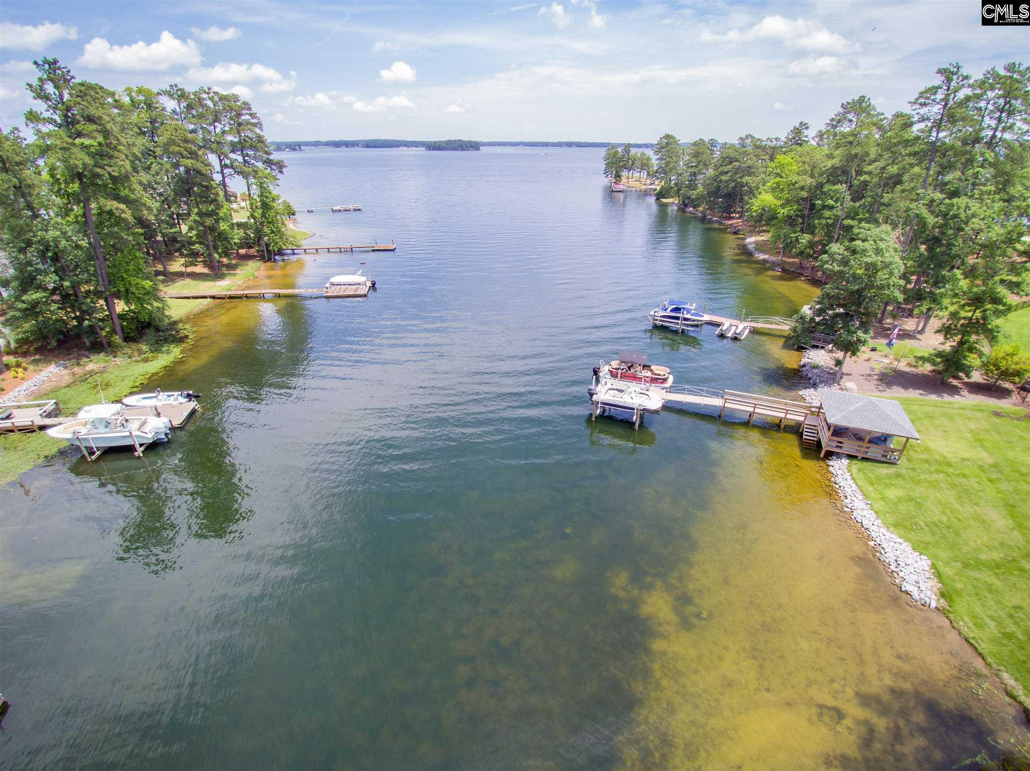 829 Tryst Point Chapin, SC 29036