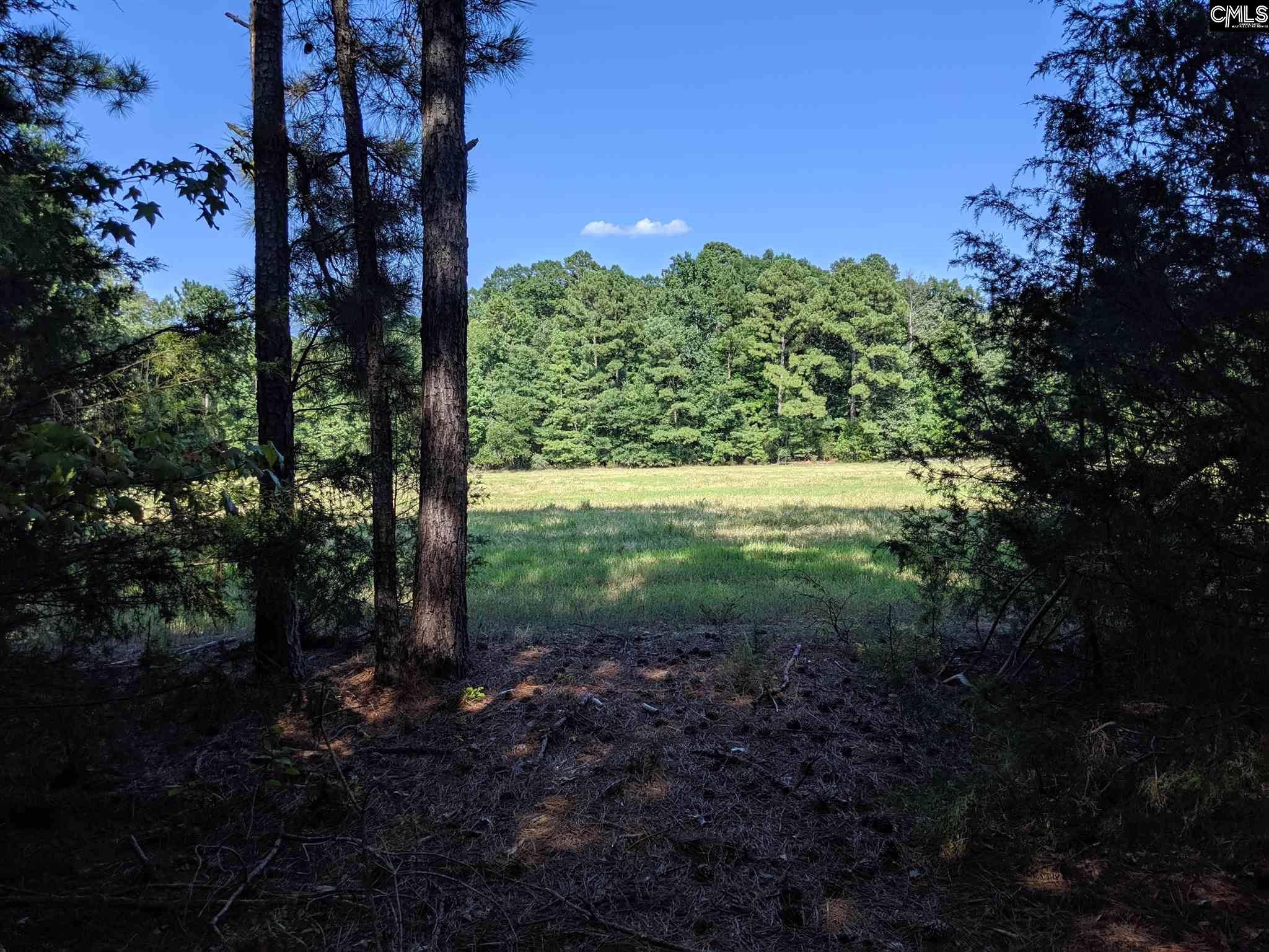 N/s Kennerly Road Unit Parcel A Irmo, SC 29063