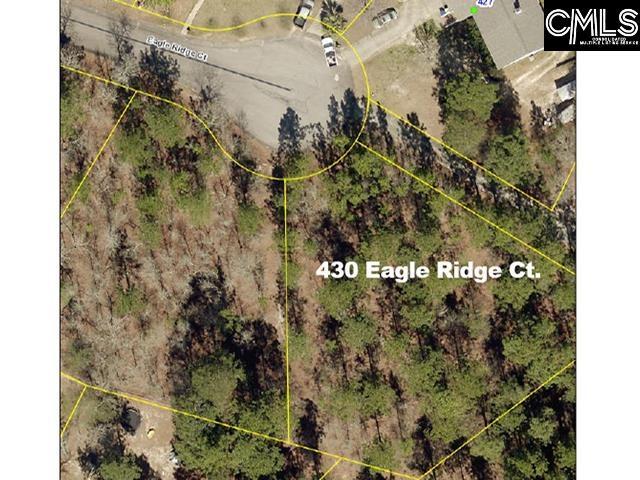 430 Eagle Ridge Court Gaston, SC 29053