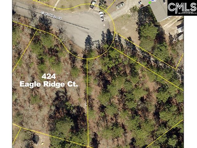 424 Eagle Ridge Court Gaston, SC 29053