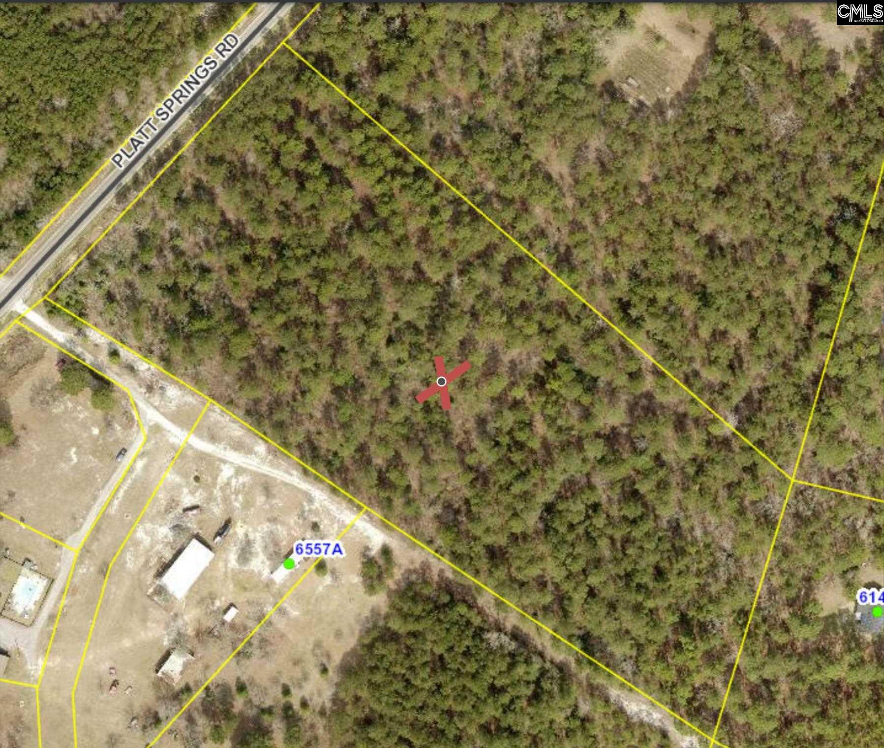 +/- 10 beautiful acres with tons of potential! Prime location for home site(s). Award winning Lexington One Schools!
