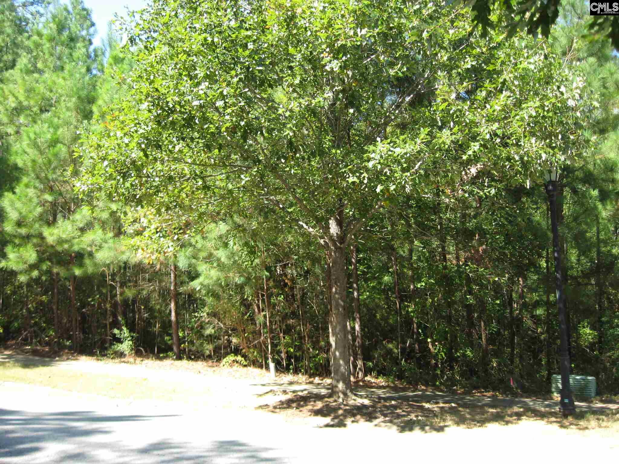 377 Woodlander Drive Blythewood, SC 29016