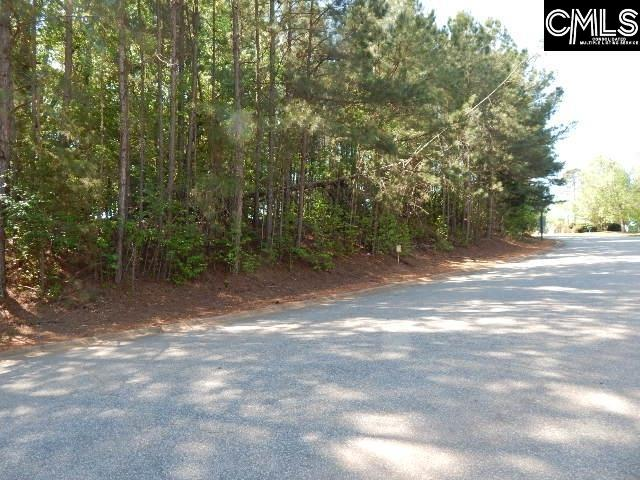 110 Lake Summit Drive Chapin, SC 29036