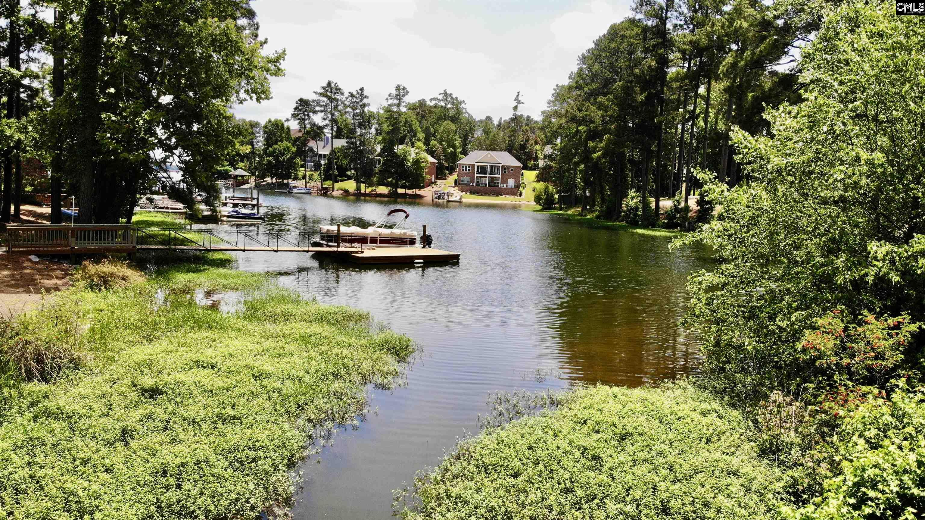229 Bays End Court Chapin, SC 29036