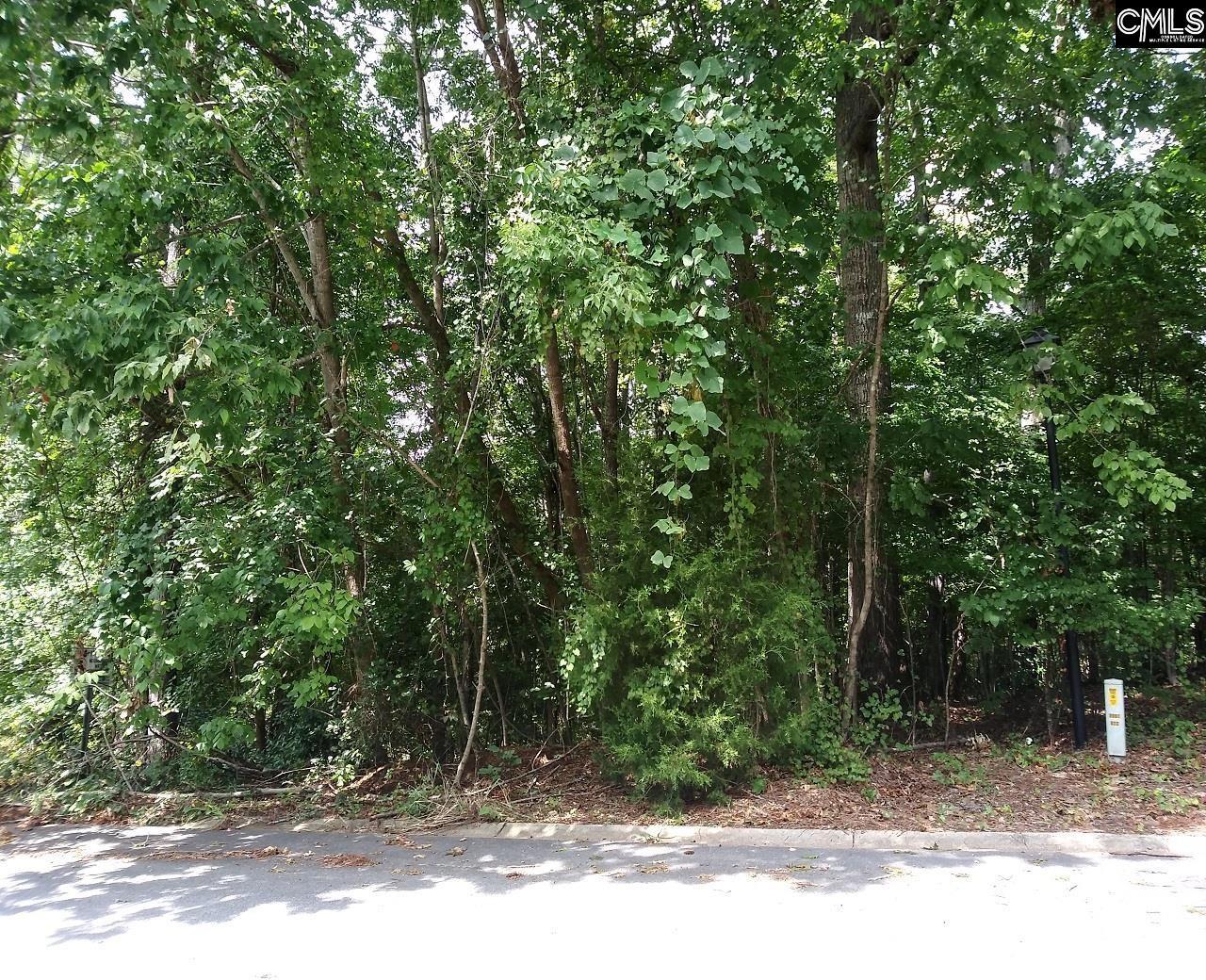 217 Corley Woods Drive Lexington, SC 29072