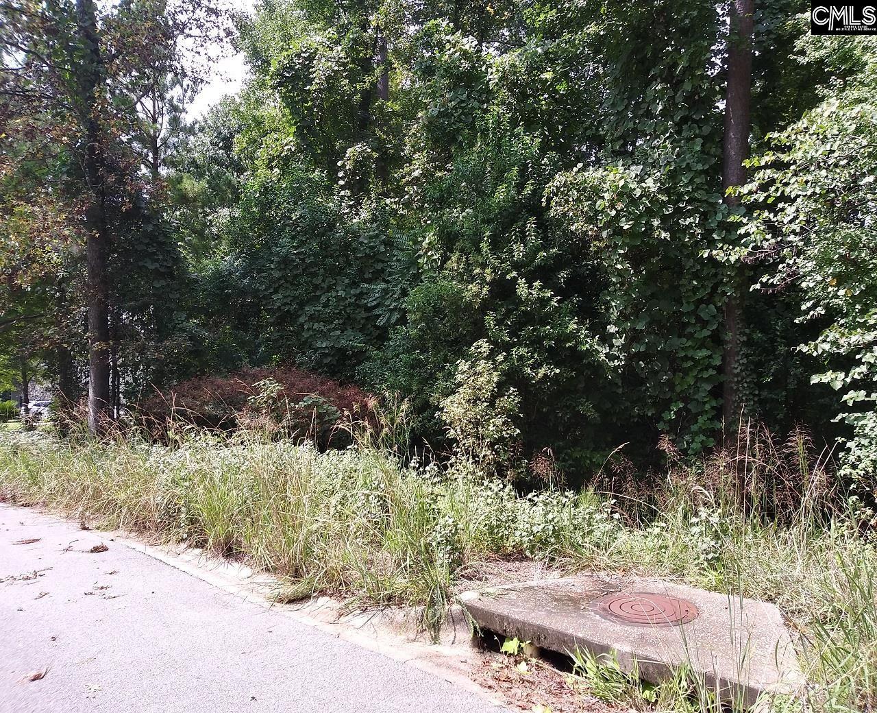 213 Corley Woods Drive Lexington, SC 29072