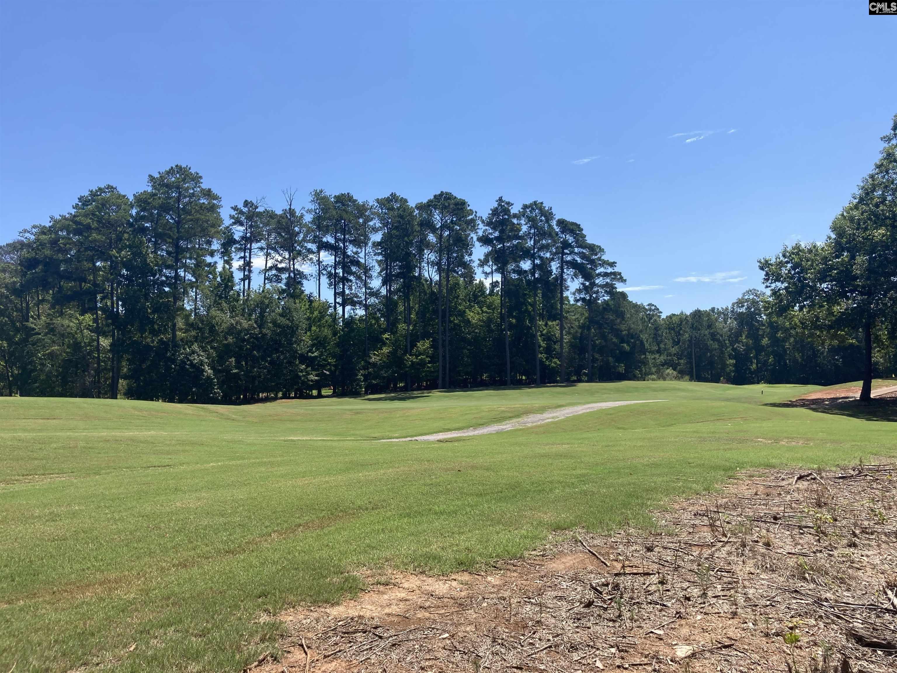 601 Golf Links Court Chapin, SC 29036