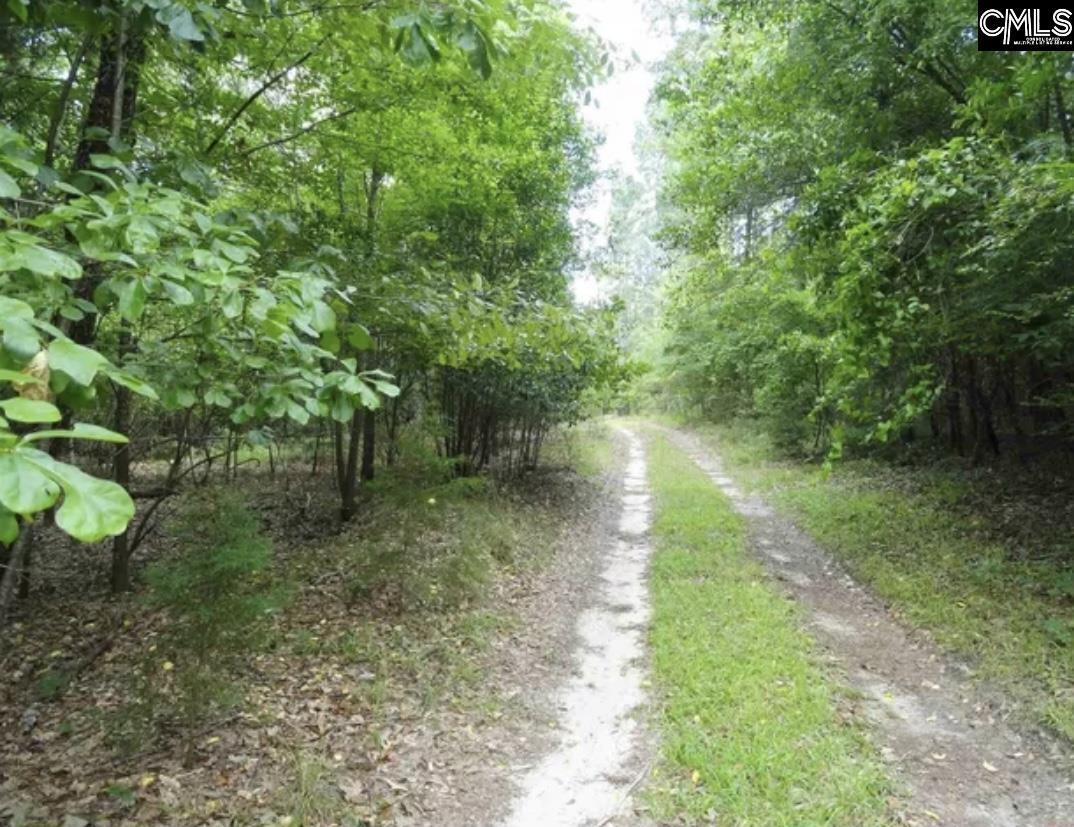 337 Big Hickory Lane Gaston, SC 29053