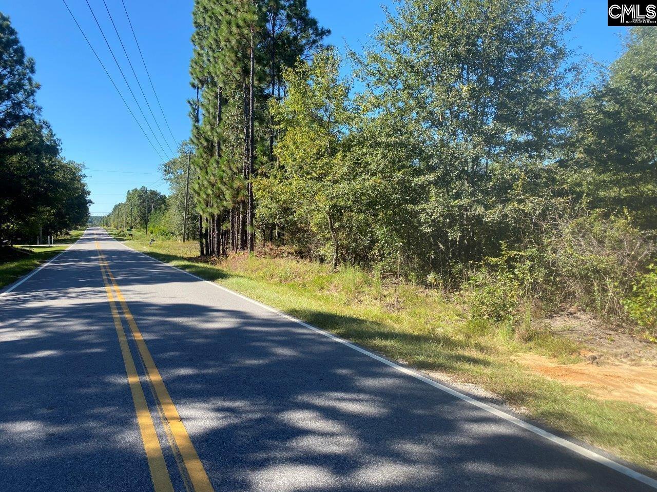 241 Forts Pond Road Pelion, SC 29123