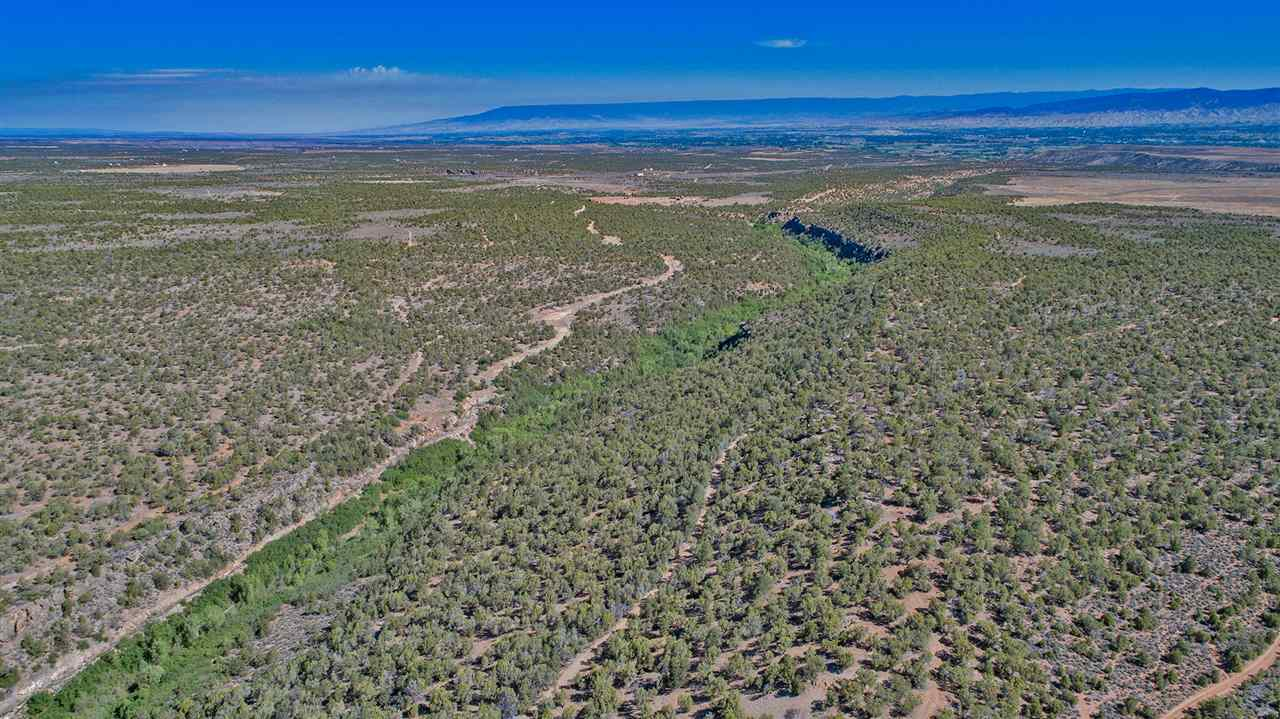 MLS# 20194042 - 1 - Tbd Old  Happy Canyon Road, Montrose, CO 81403