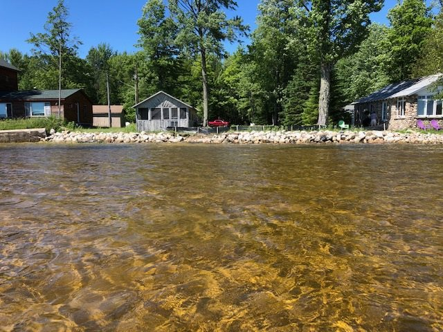 MLS 462294 - 10611  Reinhardt Shores Ln , Levering, MI