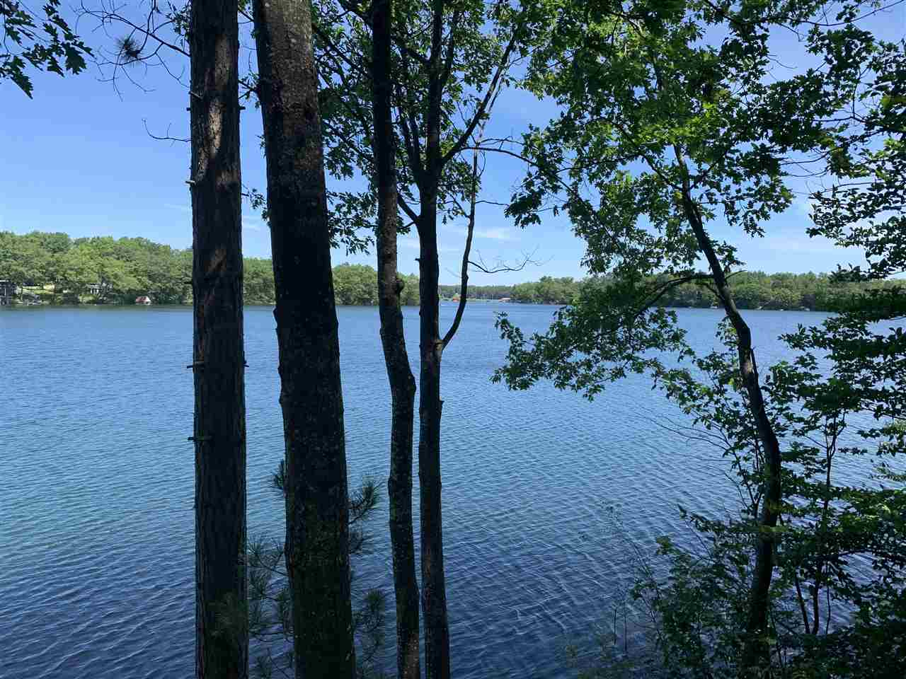 MLS 462352 - 6520  Little Twin Lake Road NE , Mancelona, MI