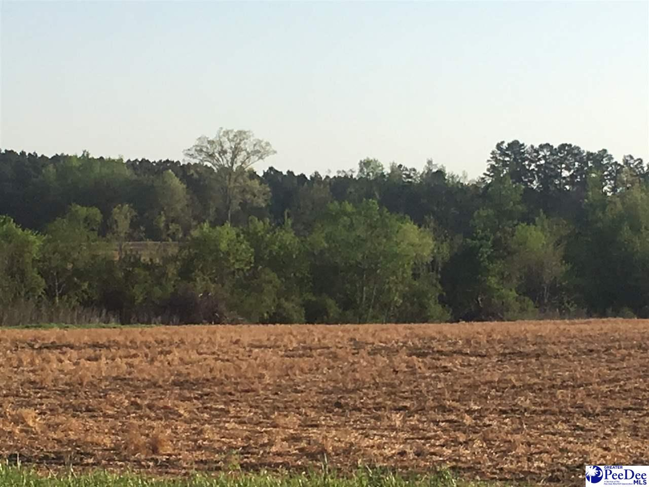 27.9 acre tract zoned as commercial. Located on the busy thruway of Hwy 601 just outside of Pageland town limit right across from Walmart DC. Also, only minutes from the NC line. Prime location to use as farmland or building your business.
