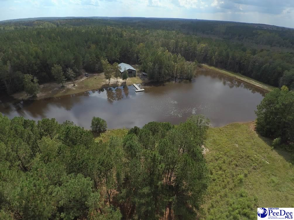 """186 acres with Marketable Timber. Beautiful country home w/approx 6 acre pond. Tile flooring. MB & bath has double closet, soaker tub, shower and double vanity. Two other bedrooms share a second full bath. Kitchen has 6 burner Vulcan gas stove, prep sink & cutting area. Features a stone fireplace, custom built ins & wet bar. Some Fencing. Additional Trailer will remain. 2 wells 2 septic Central air & geothermal heat. Dog Friendly. Expert Quality Finishes. Alarm. Suitable for equestrian, hunting, residencial  <iframe src=""""https://drive.google.com/file/d/1P5s-XVOwfFmHTWLVPwvPYm-h_Lve7Wnm/preview"""" height=""""480"""" style=""""width: 100%;""""></iframe>"""