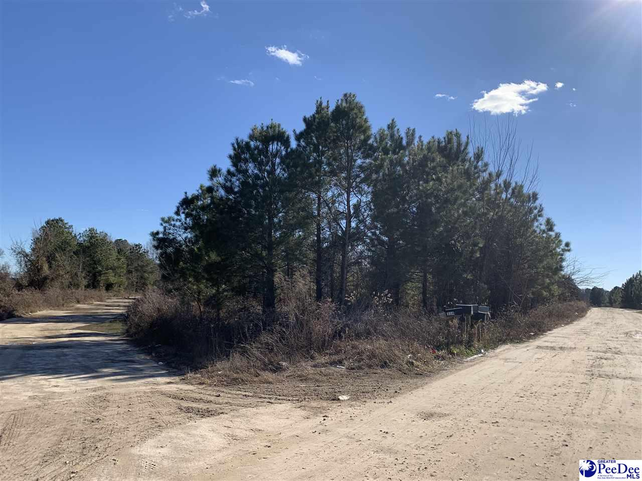 Nice corner lot in Jamestown Subdivision off of Billy Farrow Hwy.  Mobile Homes are allowed and county water is available.