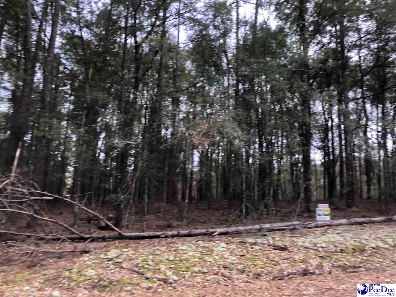 Wooded corner lot.  Great place for a new home.
