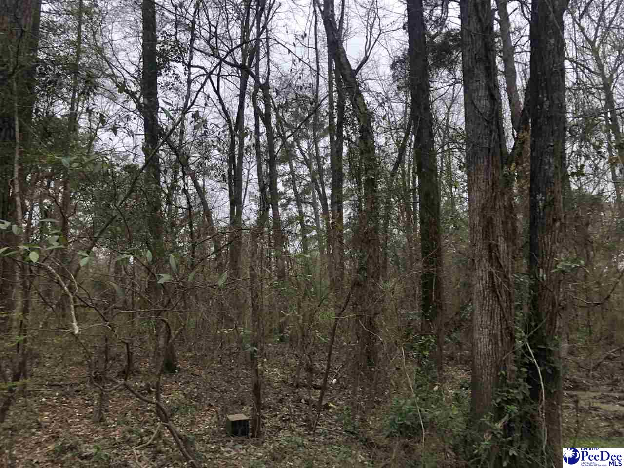 Wooded 1.12 acre lot.  Property borders Black Creek. This is one of very few lots left on Black Creek.