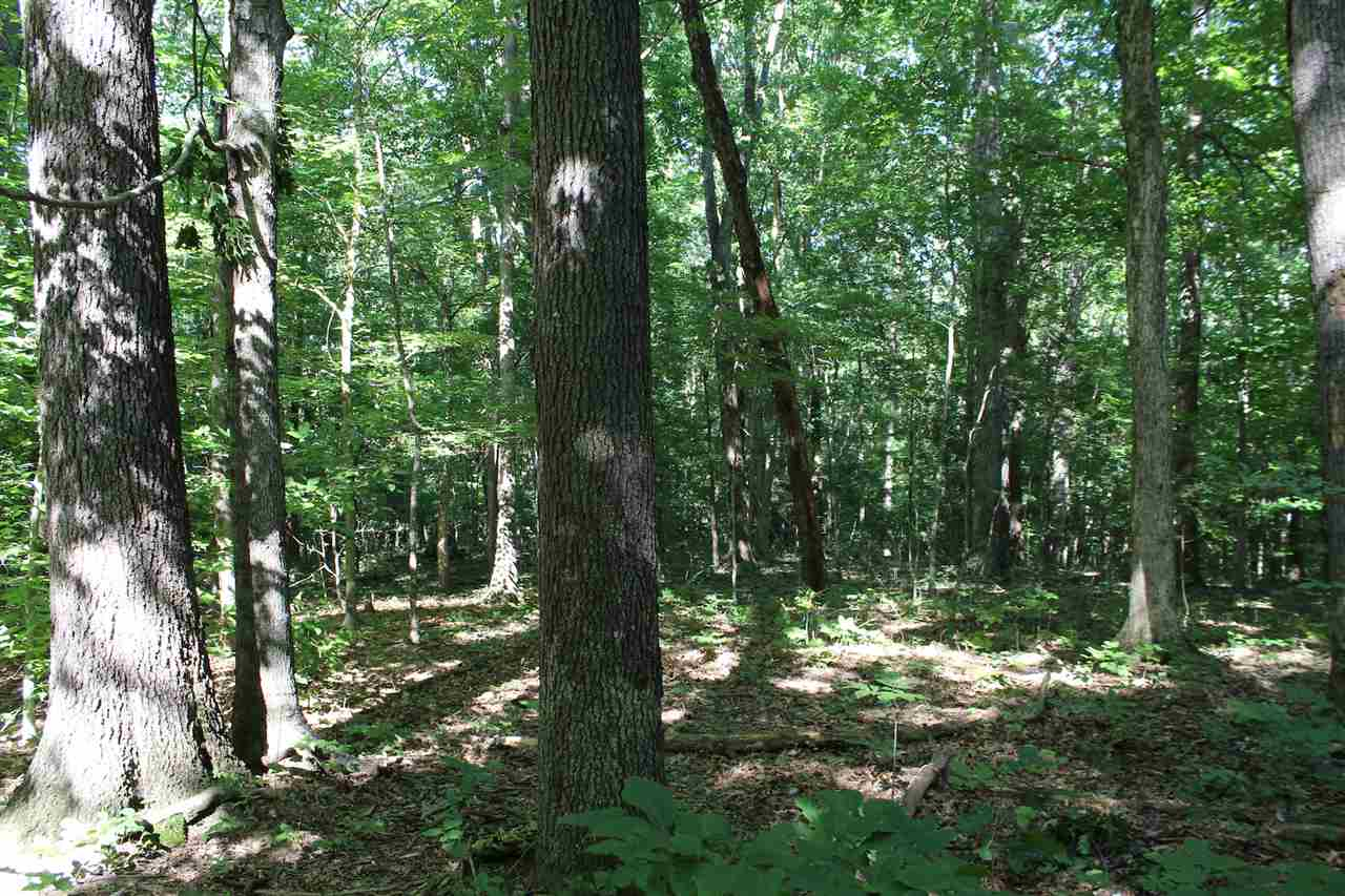 20.685 wooded acres on one of Warren County's most desirable areas. Beautiful mature trees, all utilities available. Within minutes to I-65, hospitals, WKU, Barren River Lake. Can be subdivided. Endless possibilities.