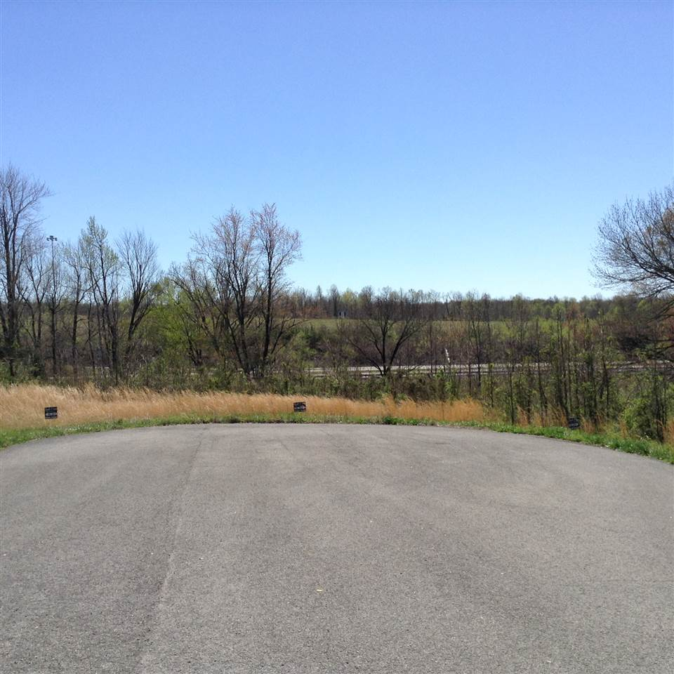 Lot 29 & 31 Magnolia Dr., Central City, KY 42330
