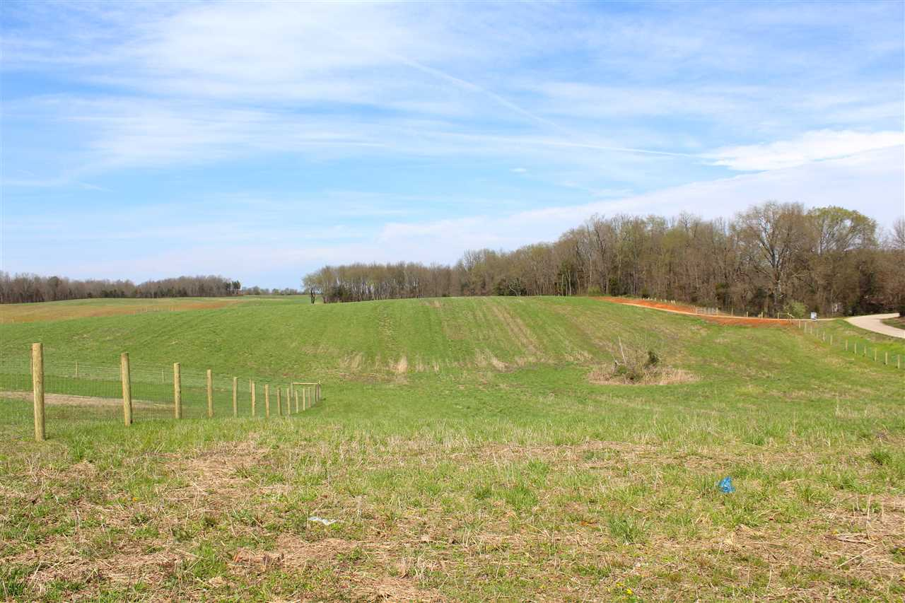 Beautiful 87.88 acres. Building sites, acreage for crops or livestock or hay plus food plots for the plentiful deer and turkey. Within minutes of Bowling Green, Smiths Grove, Corvette Museum and I-65. If you like privacy, room to roam, hunt and have livestock, horses or just a place to get away, this is a must see. Affordably priced for Warren County, KY.