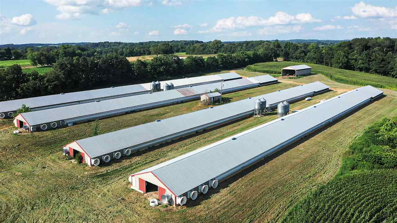 Poultry Operation: Four 40 feet x 500 feet each- broiler poultry houses  and 59+/- acres including a 3 bedroom, 1 bath farmhouse with upstairs and  basement. Opportunity to take over poultry operation and become a  grower for Tyson. Poultry houses feature many upgrades including  Choretime equipment and Choretronic controls. Additionally this farm has  a 40 feet x 88 feet litter shed/composting shed, tobacco barn & workshop.  Included in this real estate sale is a vacant lot with a septic tank and electric.