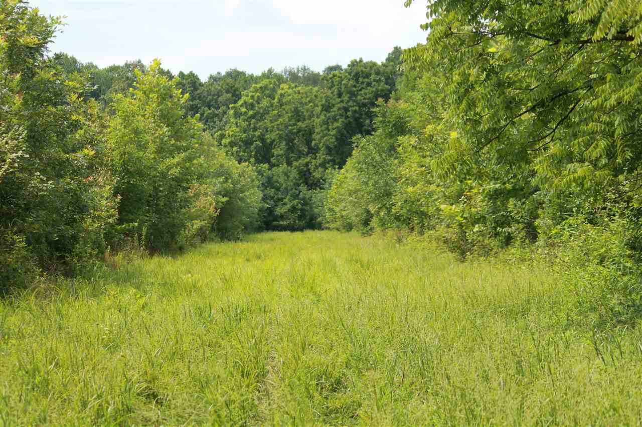 394+/- acres loaded with wildlife, marketable timber and trails. This amazing property is perfect for the outdoor enthusiast. Not only does it inhabit some of the finest whitetail deer that the state of Kentucky has to offer, but also an abundance of turkey and waterfowl. This farm features several acres of marketable timber, 90+/- acres WMA, ponds, creeks food plot areas and so much more. Jump on this once in a lifetime opportunity to own this outstanding farm!