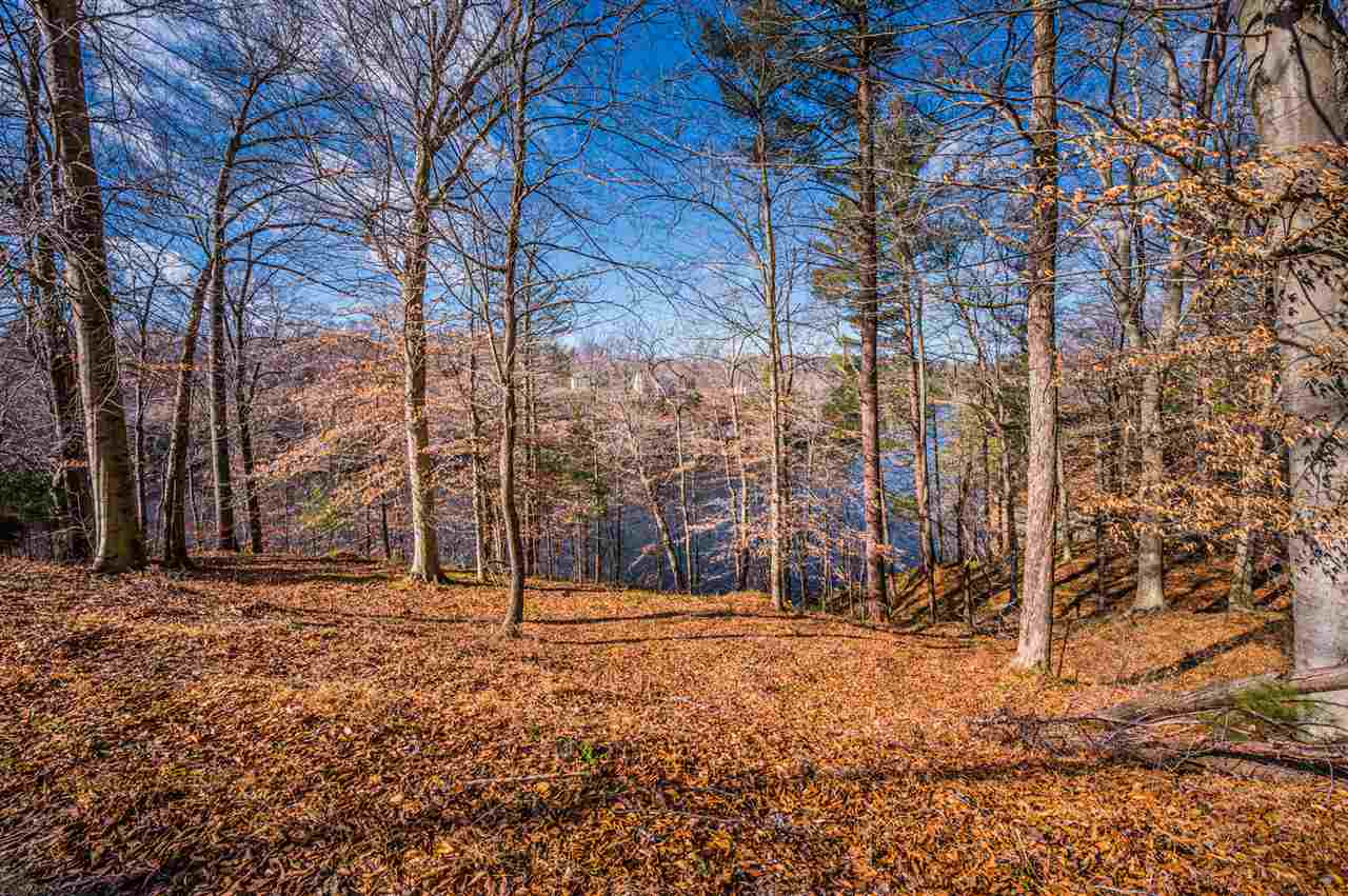 Lot 107 Canyon Run Road, Lewisburg, KY 42256