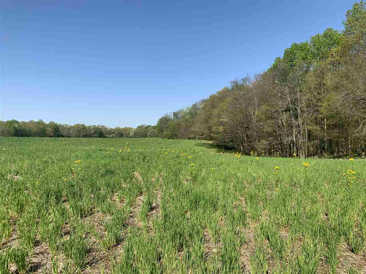 1761 Valentine Road, New Concord, KY 42076